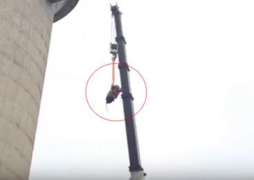 Video: Toro se subió a torre de 60 metros y lo bajaron con una grúa
