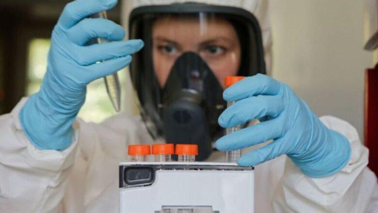 Descubren un anticuerpo que neutraliza el COVID 19