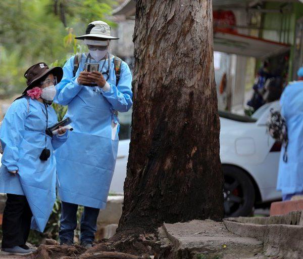 Virus Chapare en ascenso, ¿de qué se trata su naturaleza similar al ébola y al SARS-CoV-2?